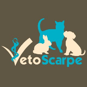 Cabinet vétérinaire VetoScarpe Dr Mairesse-Vanden Bergh Saint Laurent Blangy